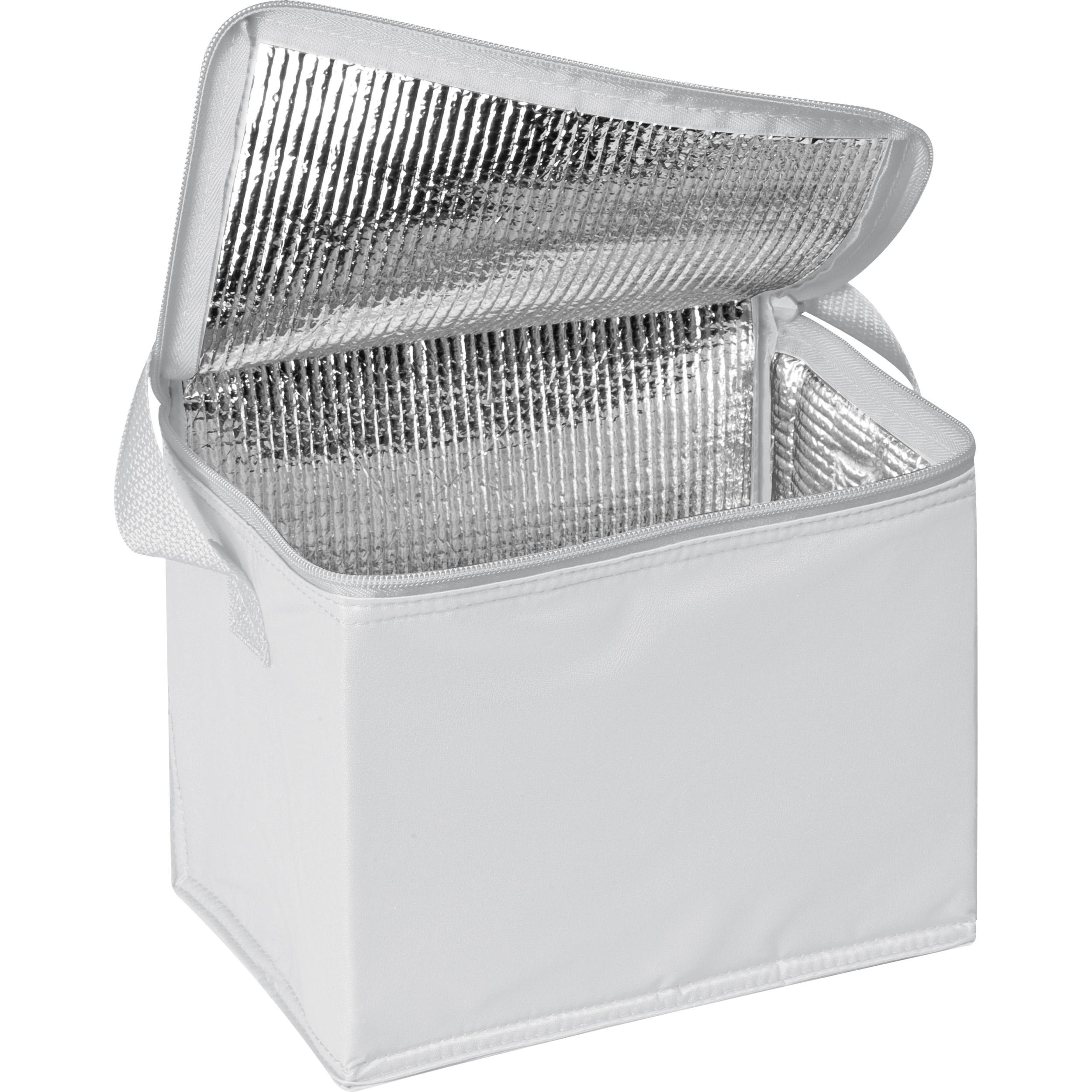 Kühltasche für 6 Dosen à 0,5l